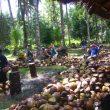 Besok, KOPRA Hadiri Festival Kelapa Internasional di Bali