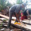 """""""Bahalo Sagu"""", Sisa-sisa Kebertahanan Pangan Lokal di Desa Samo, Halmahera Selatan"""