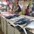 Program LIN Maluku Utara Jalan di Tempat, Abdullah Assegaf Kerjanya Apa???