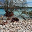 Saat Abrasi Mengancam Warga Pesisir Pantai Batang Dua Ternate