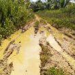 Baru Dibangun, Jalan Tani di Desa Morodadi, Morotai, Rusak Parah